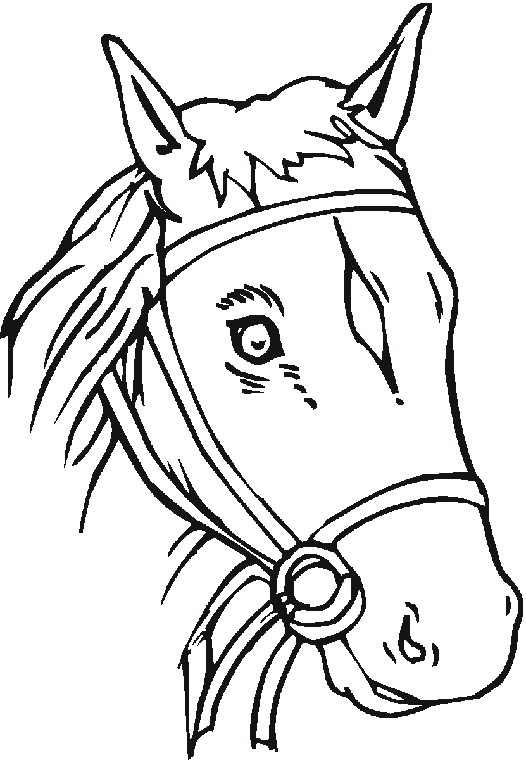 coloring pages of a horse head - printable horse head clipart best