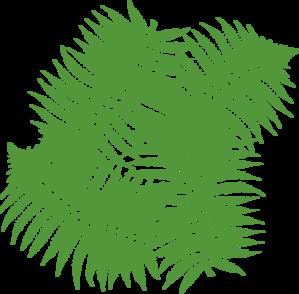 Rainforest Leaves - ClipArt Best