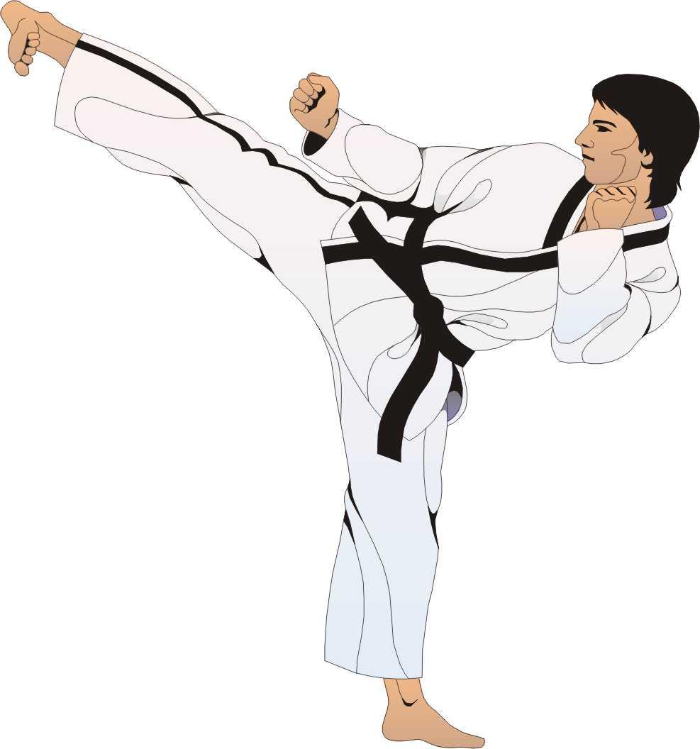 Karate Cartoon ... Clip Art Of Karate
