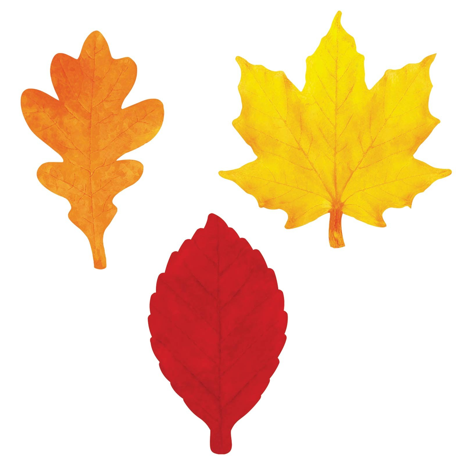 This is a picture of Invaluable Free Printable Fall Leaves
