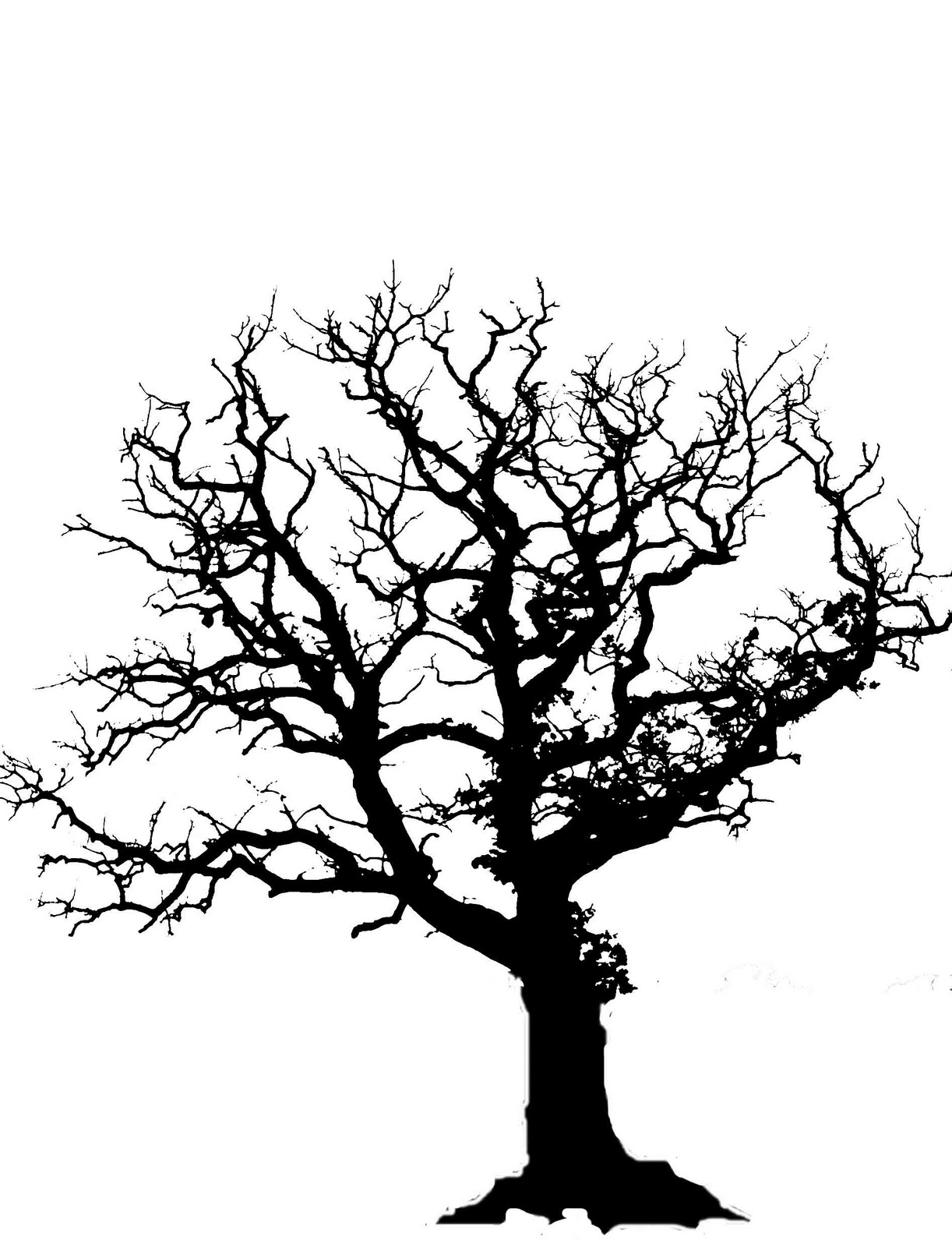 Bare Tree Sketch - ClipArt Best