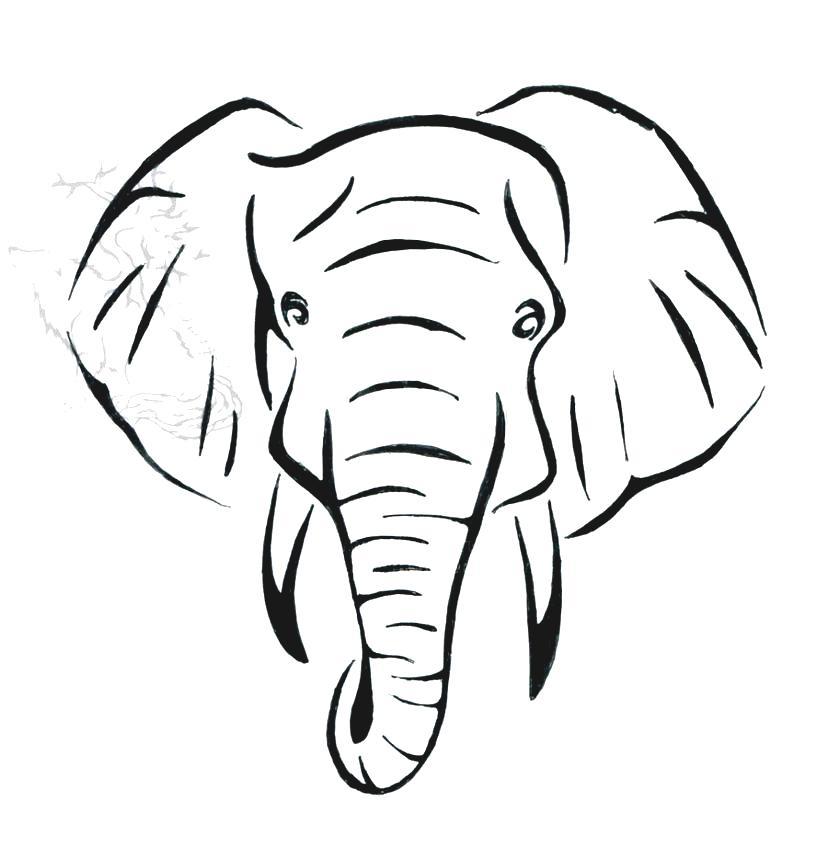 elephant face drawing - photo #6