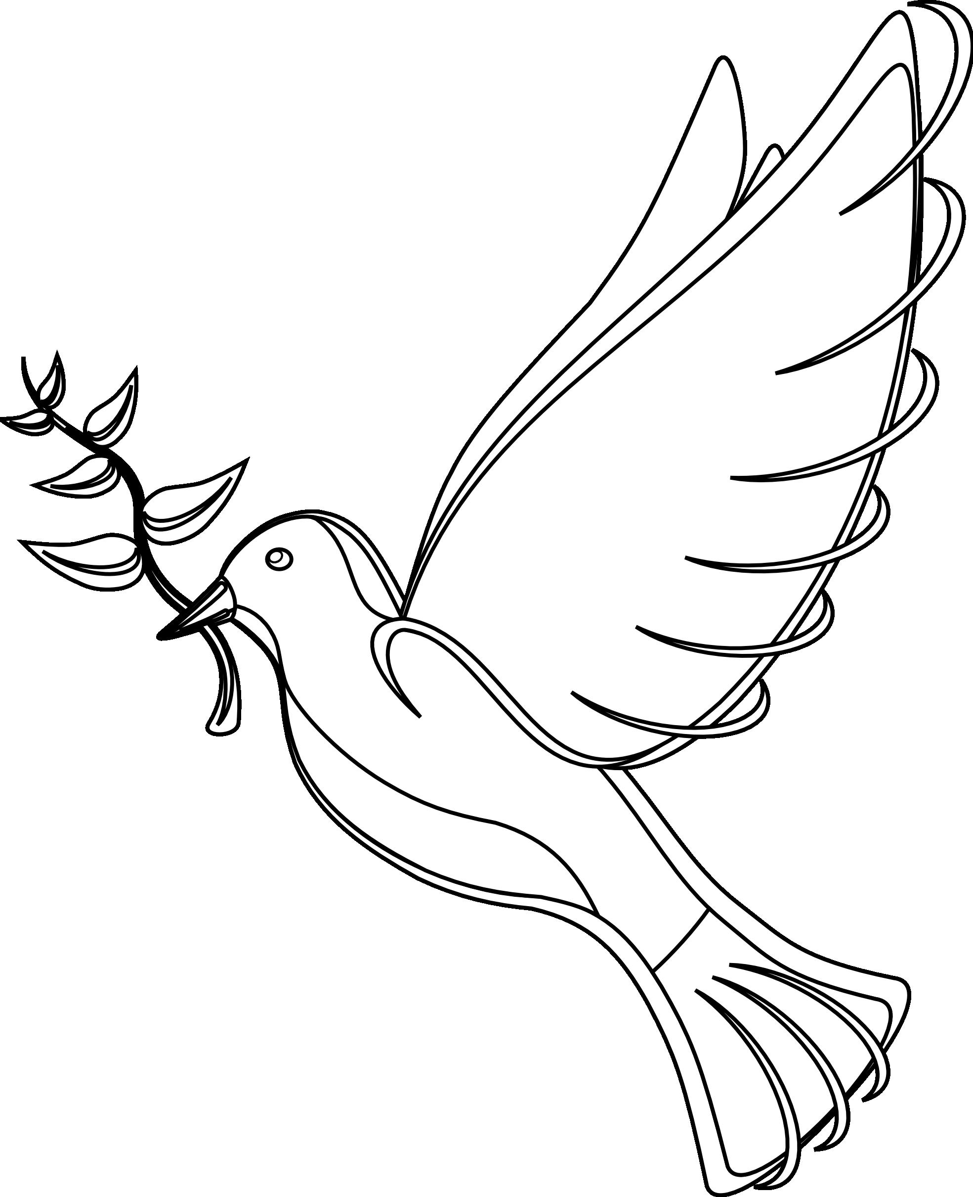Dove bird flying clipart