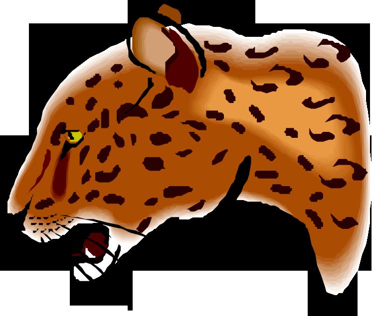jaguar animal clipart - photo #10