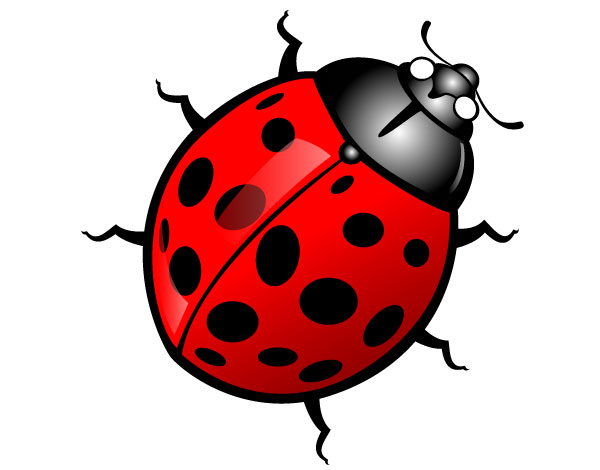 36 clip art bug . Free cliparts that you can download to you computer ...