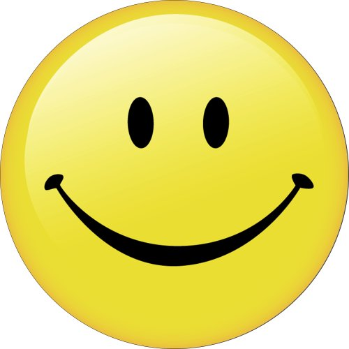 Amazon.com: Smiley Face Spare Tire Cover: Automotive