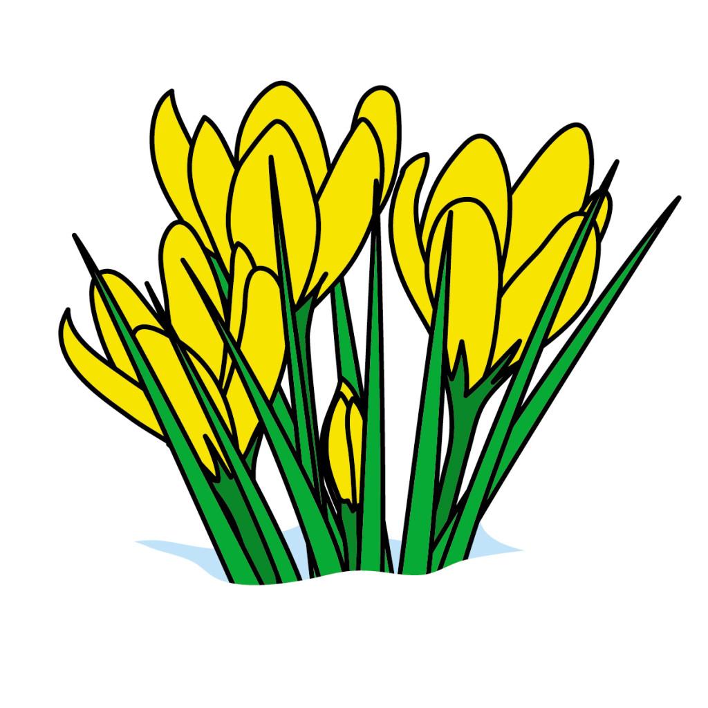 Cartoon Flowers ClipArt Best