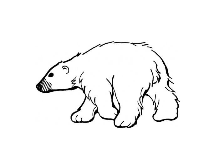 Bear Cartoon Images Stock Photos amp Vectors  Shutterstock