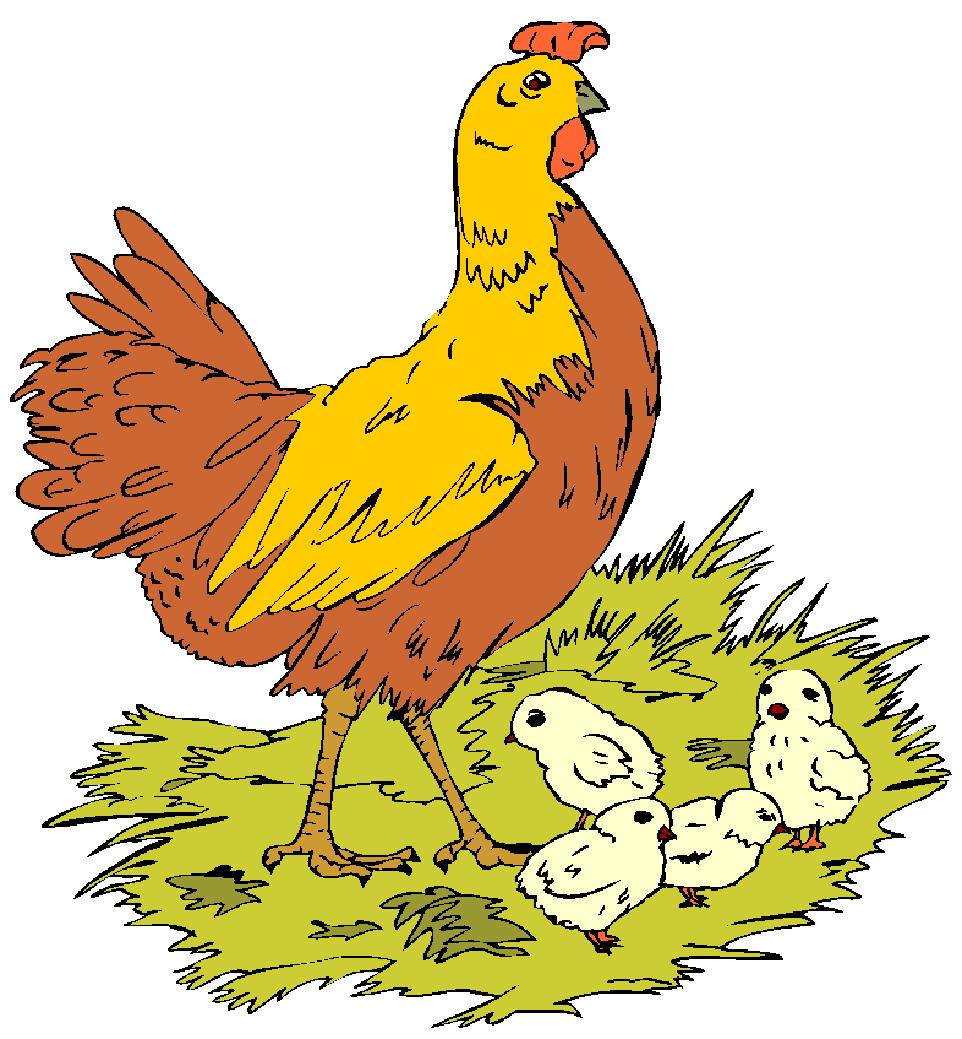 Chicken clip art free