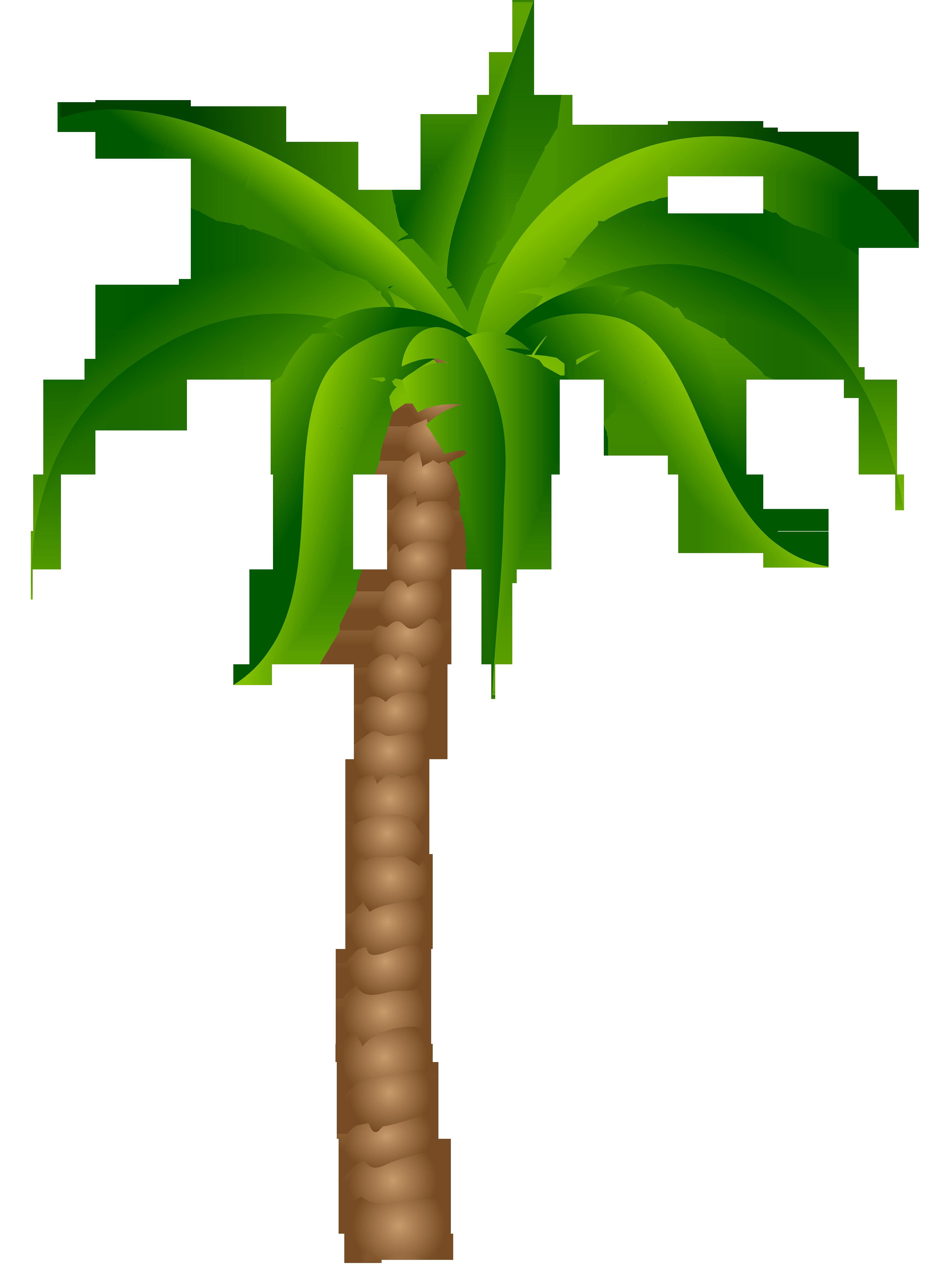 Palm Perfect of Charleston - Yahoo Local