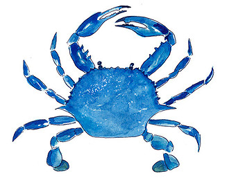 Image of Blue Crab Clipart #4938, Blue Crab Clip Art From Votes ...