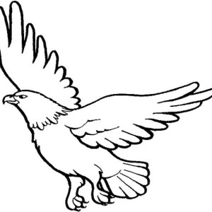 Image Result For T Rex Coloring Page Free Parrot