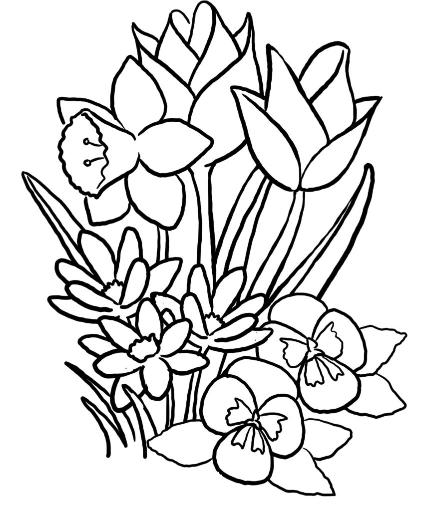 big flower coloring pages - photo#35