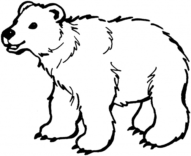 bear coloring pages sparklebox free - photo#1