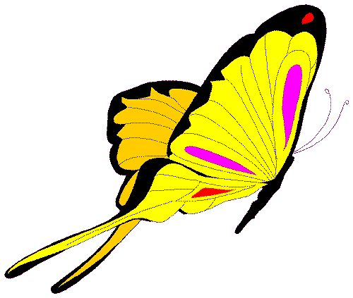 animated butterfly clipart free - photo #19
