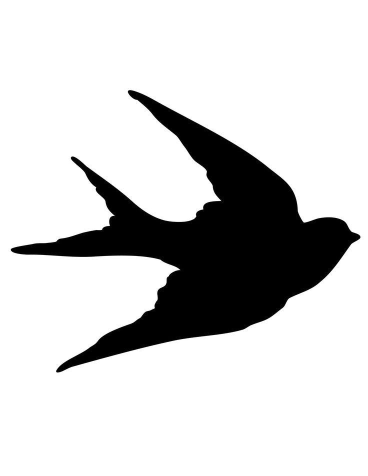 Amazoncom Small Soar Dove Bird Necklace Delicate 925