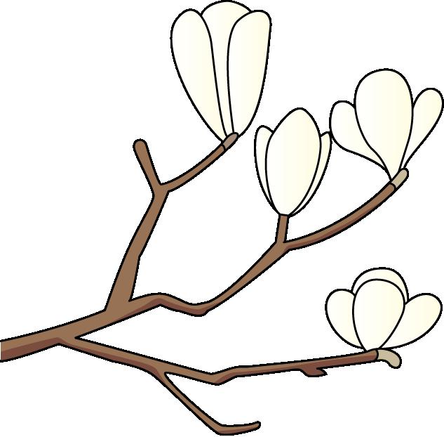 Magnolia Clip Art - ClipArt Best