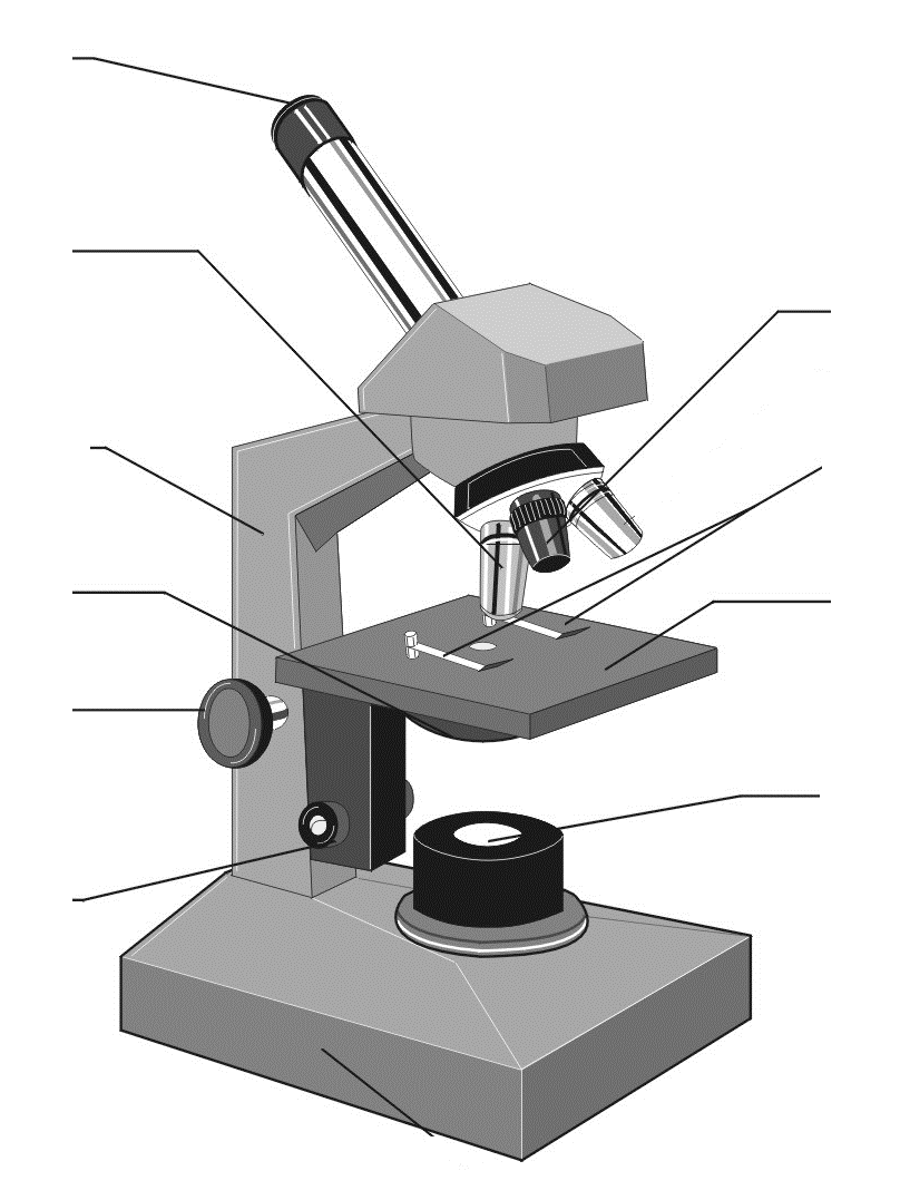 Worksheets Microscope Labeling Worksheet label parts of microscope clipart best diagram worksheet intrepidpath