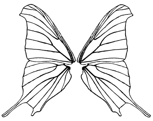 Butterfly Wings · Black
