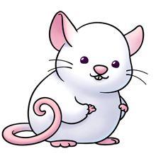 Clip Art Rats - ClipArt Best