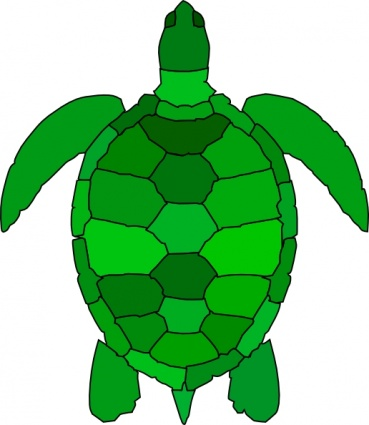Turtle Art - ClipArt Best