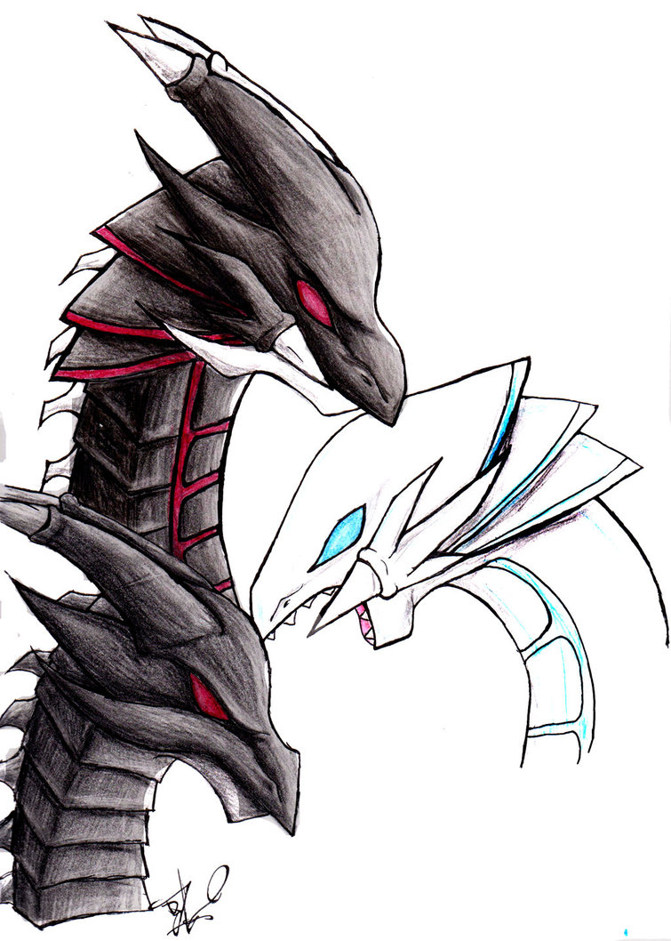 Blue Eyes White Dragon And Red Eyes Black Dragon Wallpaper Clipart Best