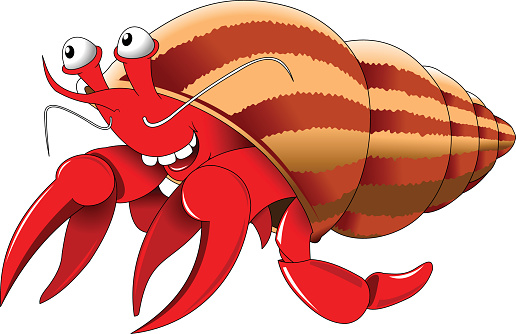 Hermit crab clipart - photo#10