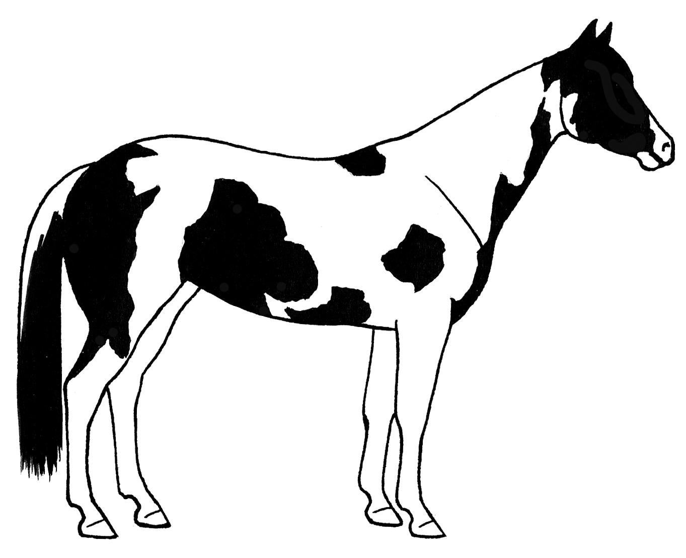 Quarter Horse Clip Art - ClipArt Best