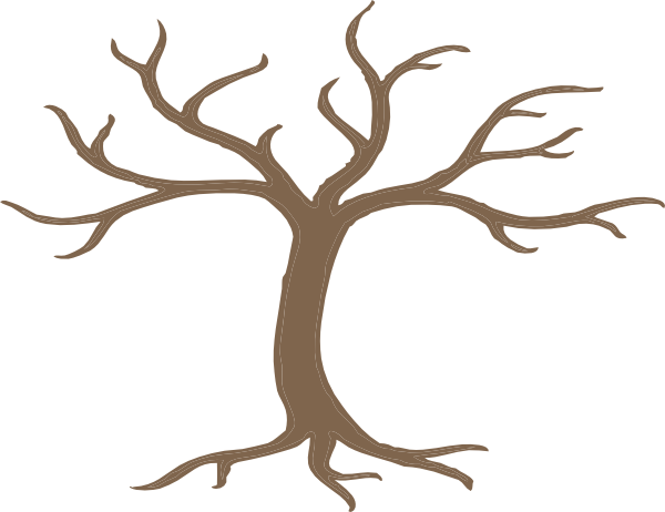 bare tree trunk coloring page printable pages