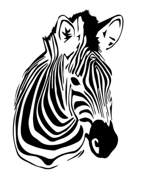Line Drawing Zebra : Zebra line drawing