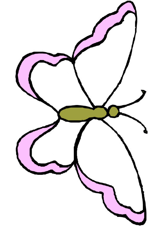 Butterfly Drawing Template ClipArt Best