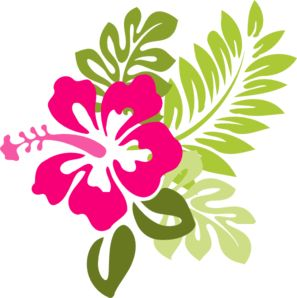 Pink hawaiian flower clip art