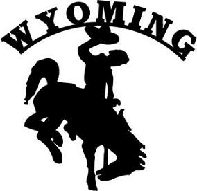 1000+ images about Wyoming Cowboys | Yellow and brown ...