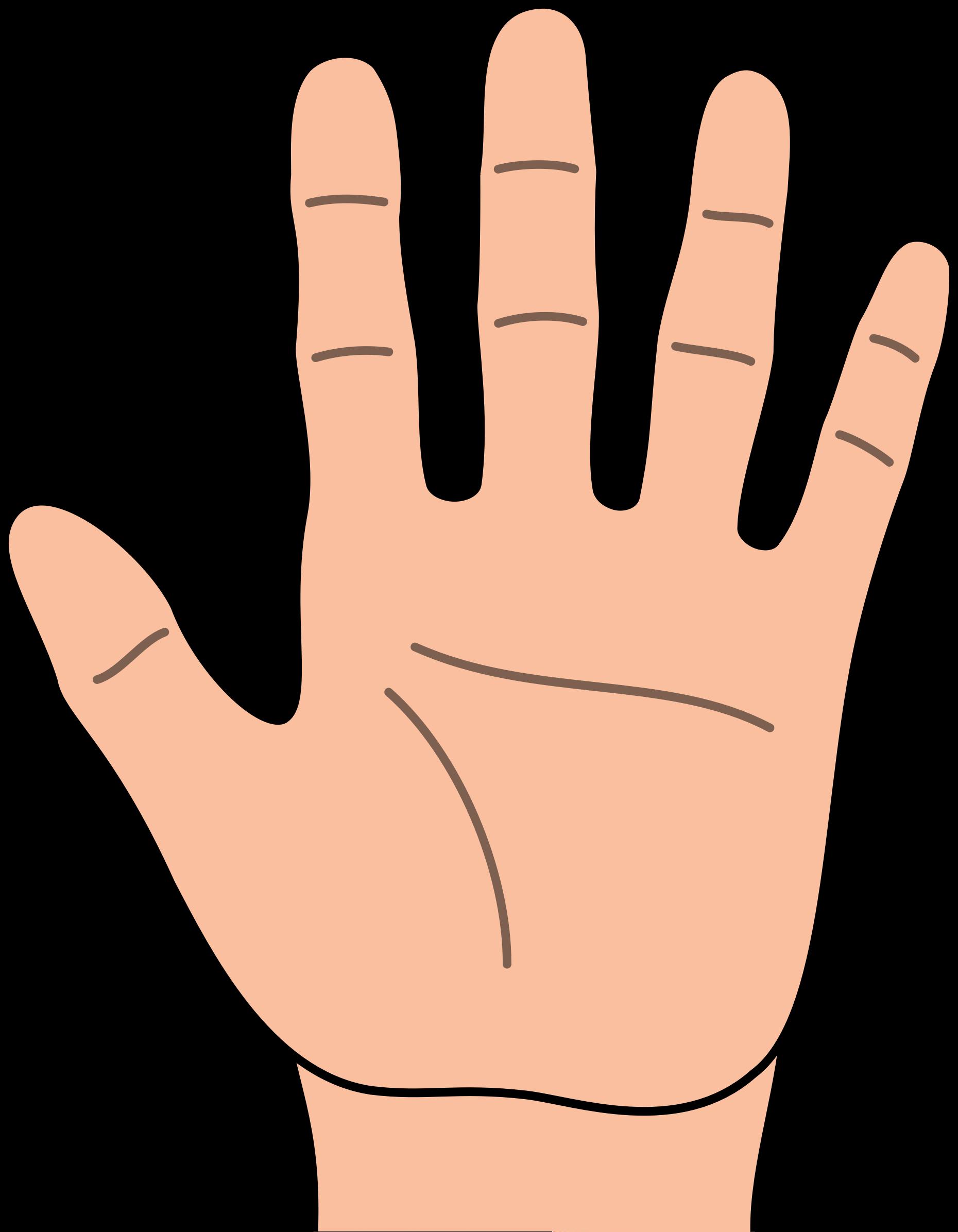 Hands clip art hand cartoon 3 - dbclipart.com