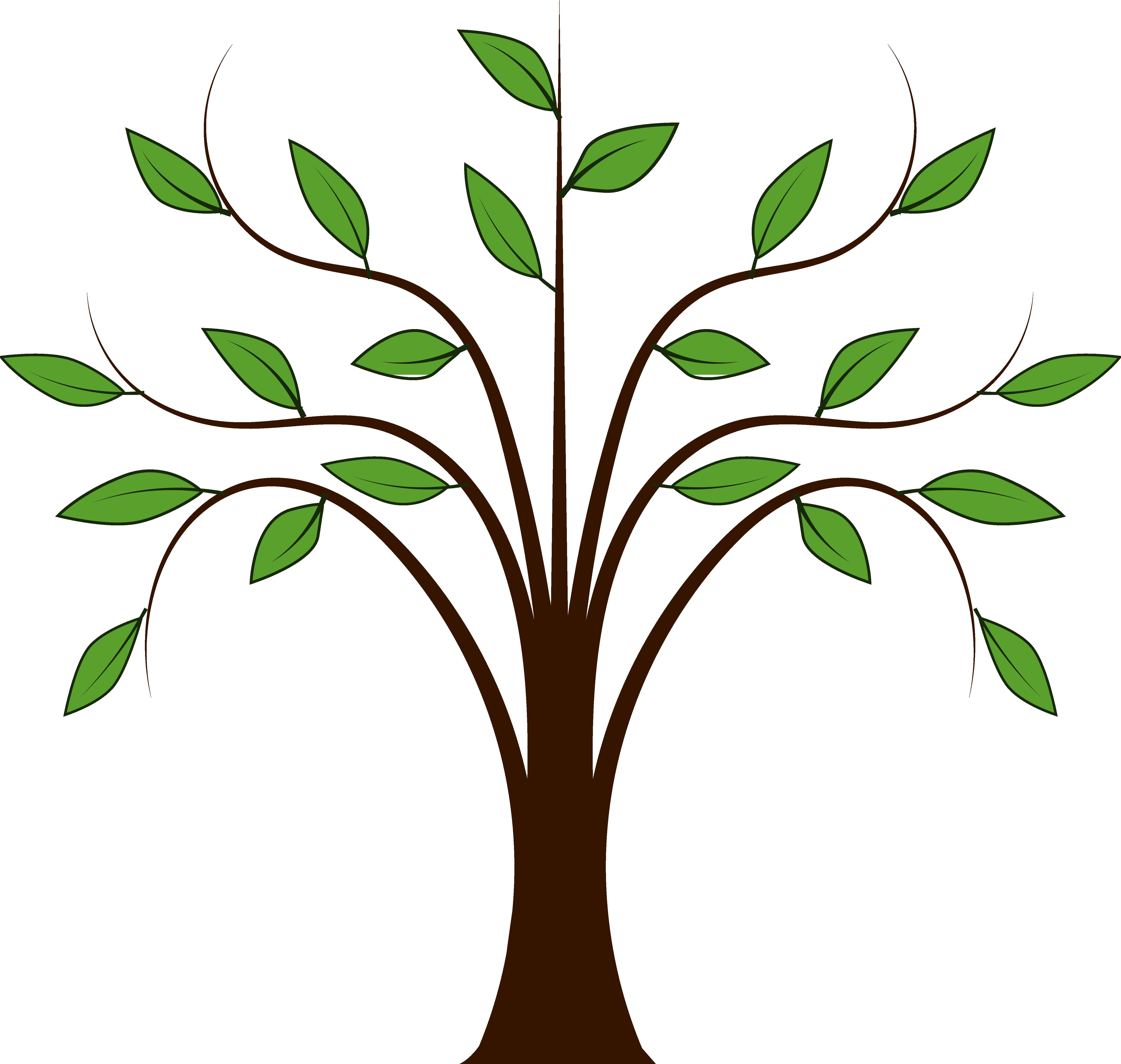 Tree Branches Outline Clip Art Free Oak Tree Clip Art