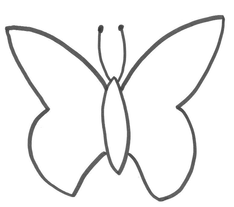 Butterfly Wing Outline - ClipArt Best