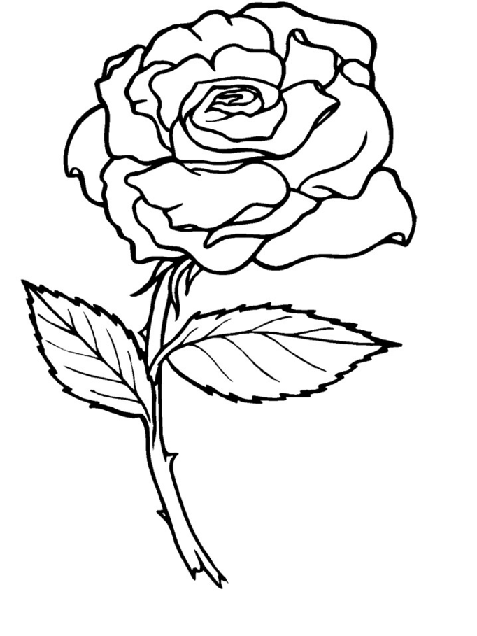 rose art coloring pages - photo#15