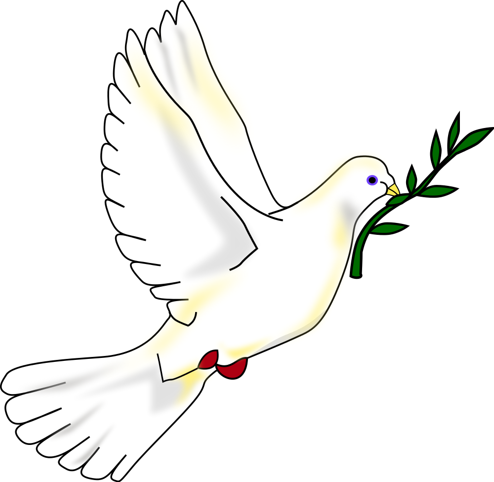 Clipart dove with olive branch