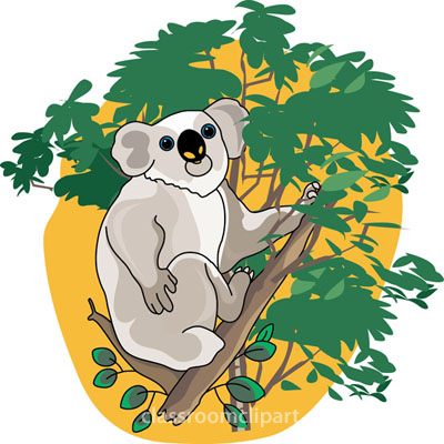 Clip Art Koala Bear Clip Art koala bear clip art clipart best in a tree clipart
