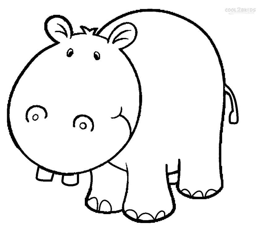 Drawing Of Hippo