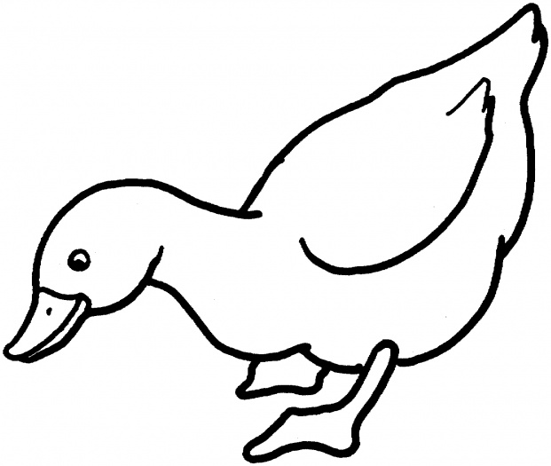 Drawing Lines With Latex : Duck line drawing clipart best