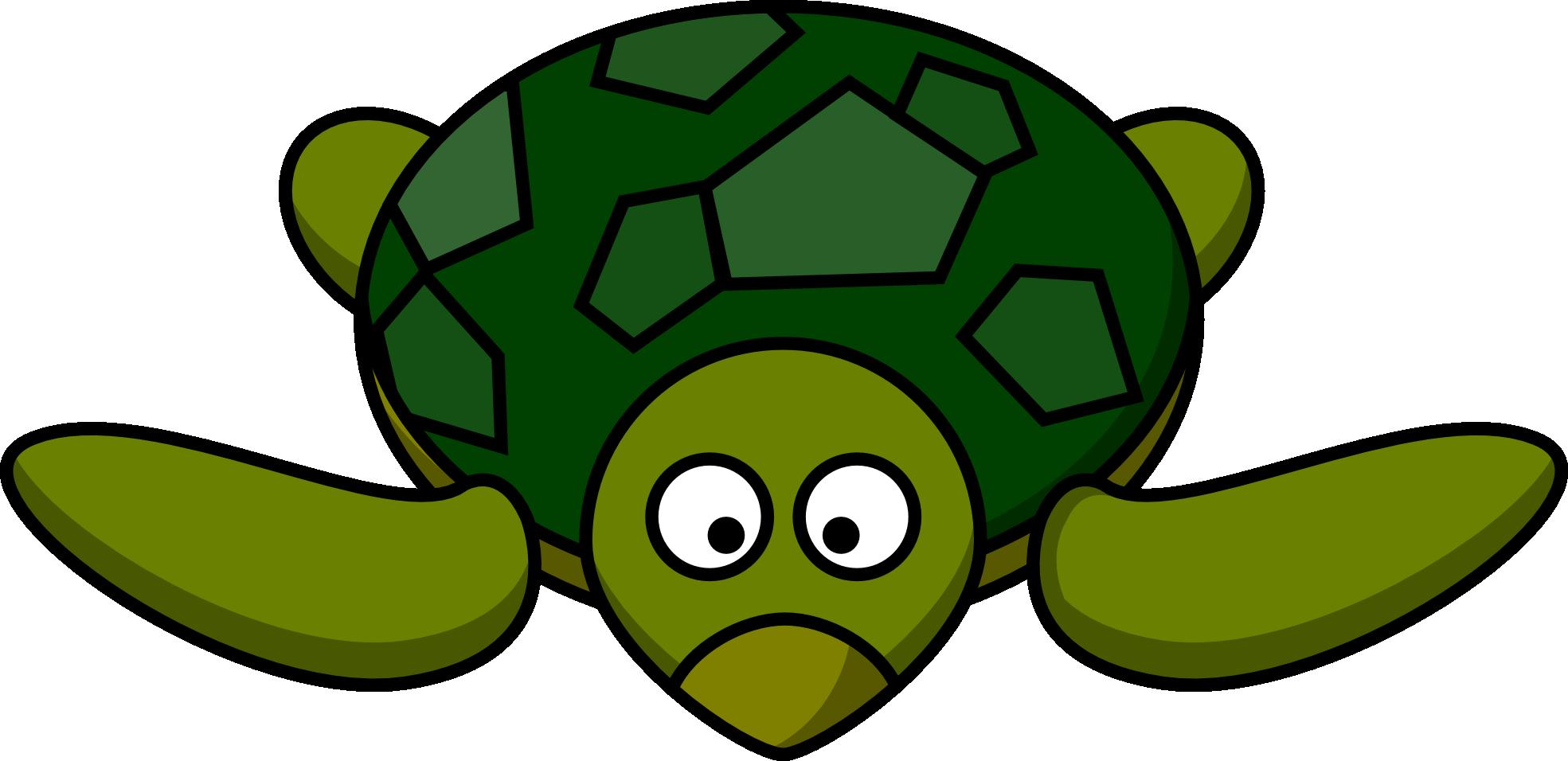 Cartoon Turtle Picture - ClipArt Best