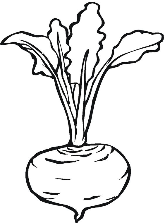 Line Art Vegetables : Vegetables line drawing clipart best