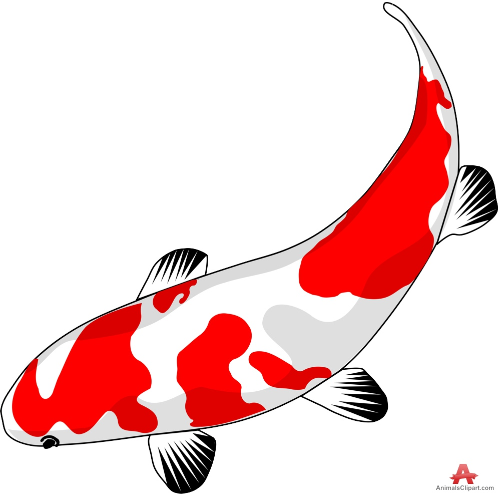 Koi fish clipart clipart best for Koi fish vector