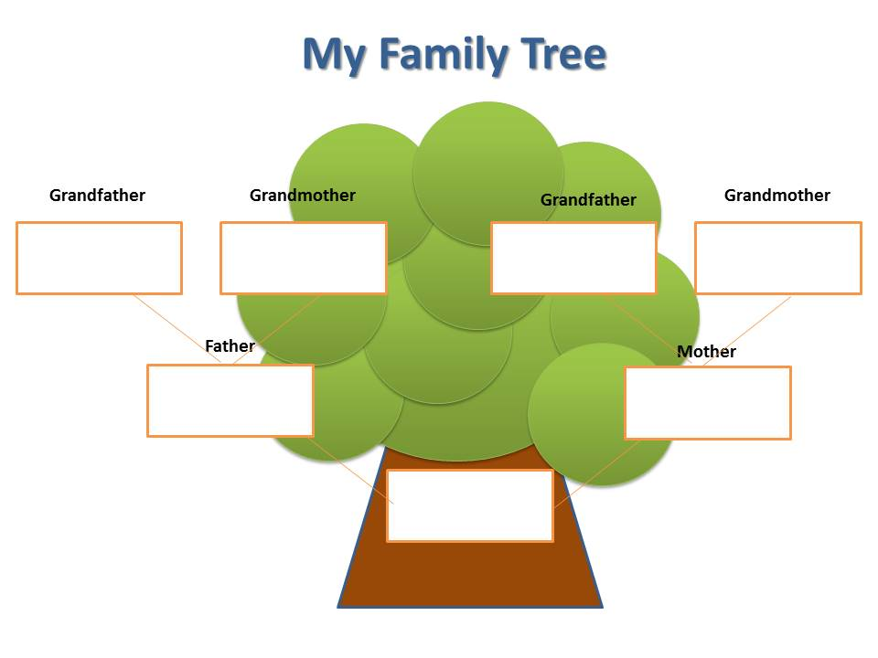 Simple blank family tree the image kid for Picture of family tree template