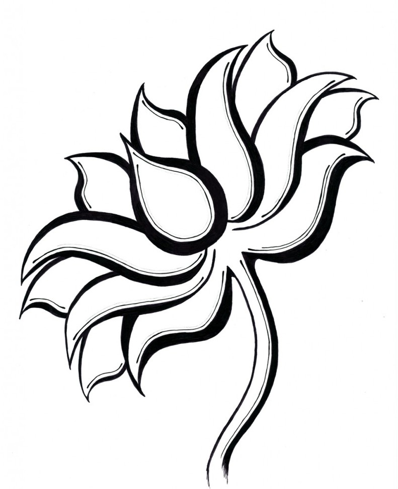Line Art Flowers Images : Lotus flower line drawing clipart best