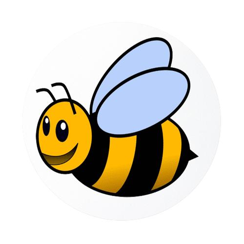 5 bee: