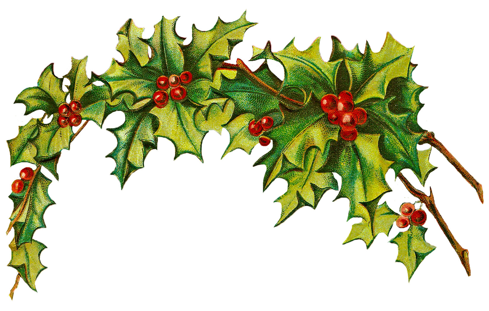 33 holly clip art free free cliparts that you can download to you ...