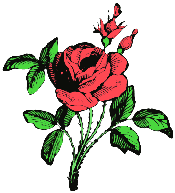 Rose Flower Animation Flash - ClipArt Best