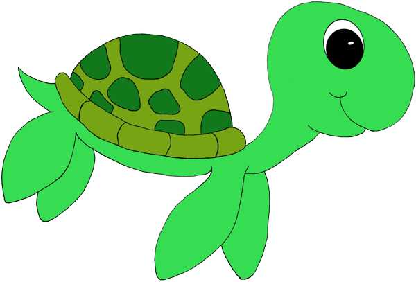 Sea turtle clip art | Home Design Gallery: www.clipartbest.com/cute-turtle